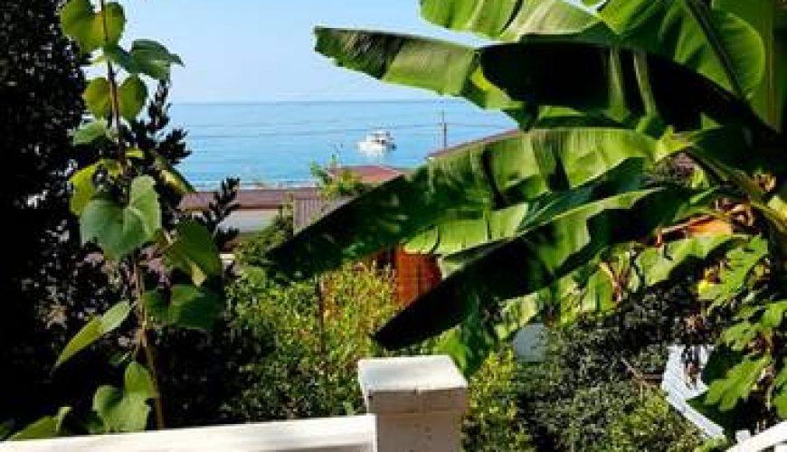 Гостевой дом «Киви», Пицунда отдых на море с Лазарум